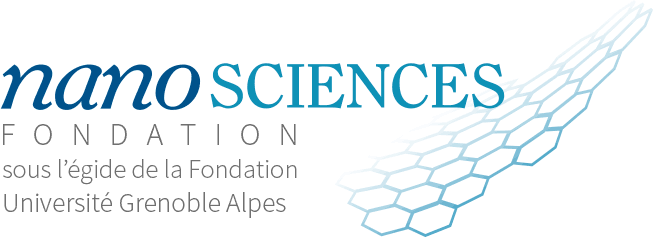 logo nanosciences